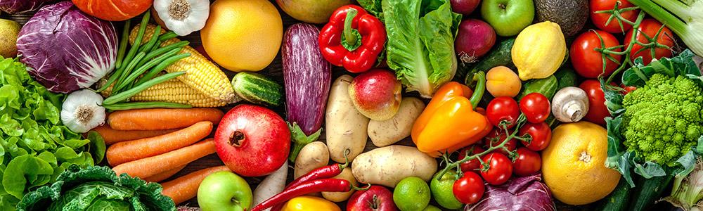 A bumper crop of vegetables